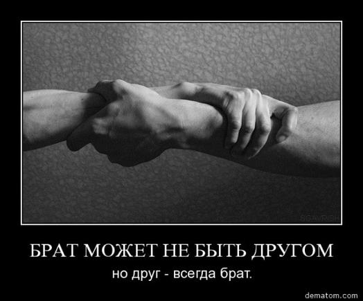 Что такое мужская дружба ?