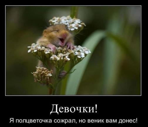 Как выглядит человек,у которого в жизни всё отлично ? ))