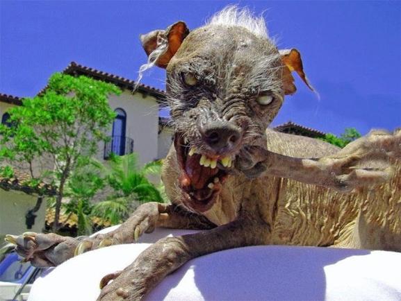 самое страшное чудовище в мире фото