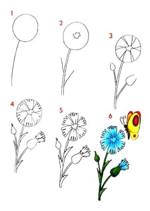 Как нарисовать красивые но простые цветы
