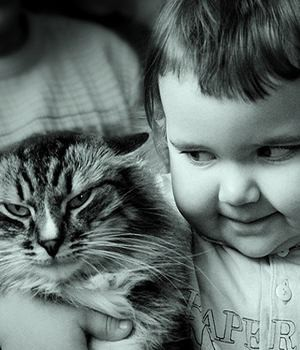 Покажите лучшего друга всех детей?