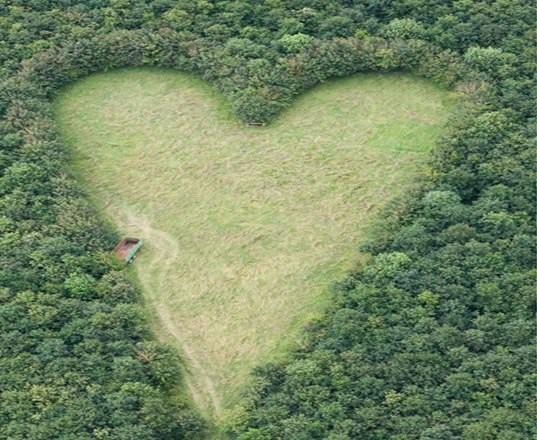 Покажите сердце?