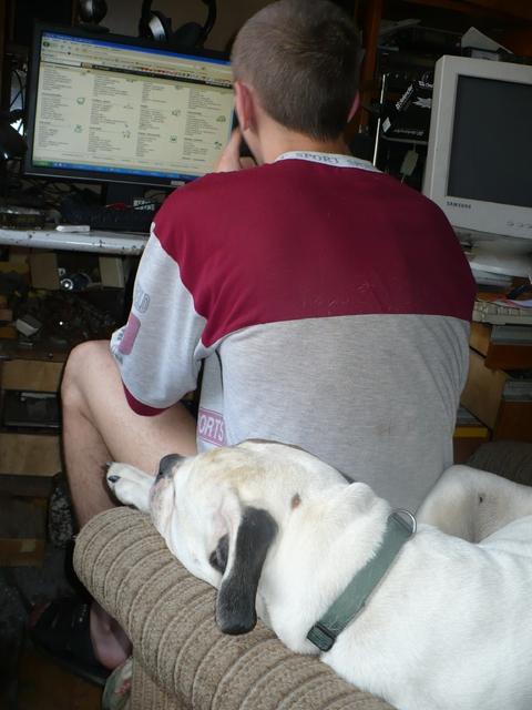 Feita mani neatstāj arī pie datora