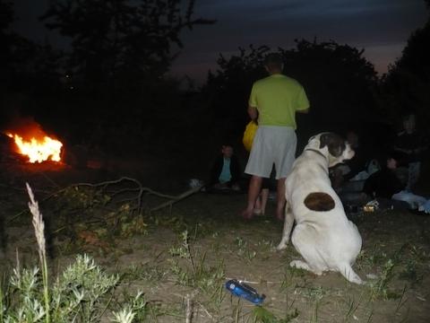 Feita līgo pie ugunskura