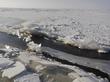 Rīgas līcis