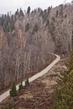 Сигулда - вид с канатной дороги ( 5 Ноября 2011 года).
