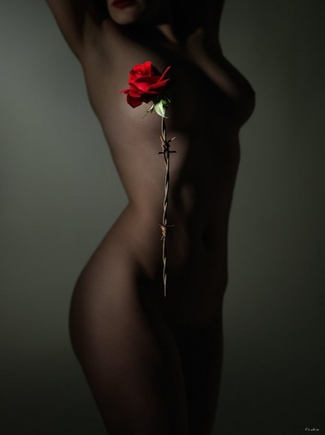 Красивое голое тело в контакте фото