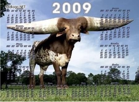 Какой календарик повесили на стенку в этом году? :-)