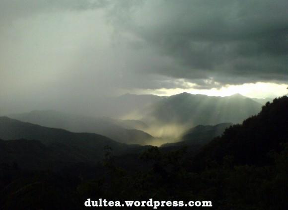 Kalni, alas, piedzīvojumi, ceļojums – kas tevi vairāk valdzina?