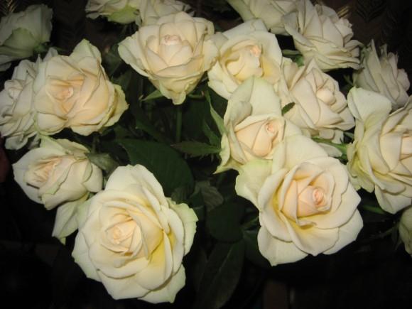 А какие цветы любите Вы?
