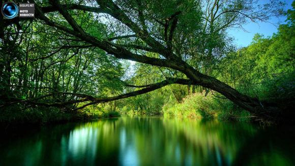 покажите красивые фото с изумрудным цветом на любую тему?