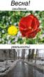 У нас только так, только весна, только хардкор )))
