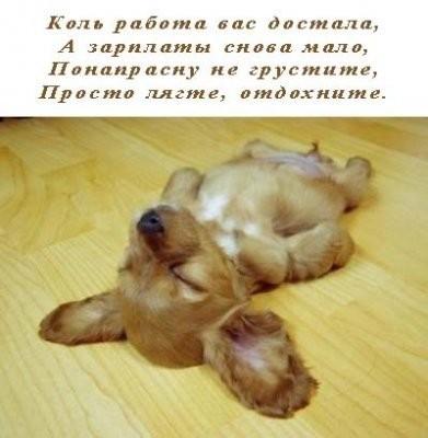 От чего вы устали?