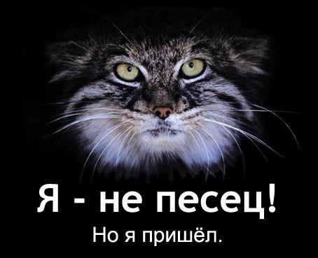 ваше любимое животное?