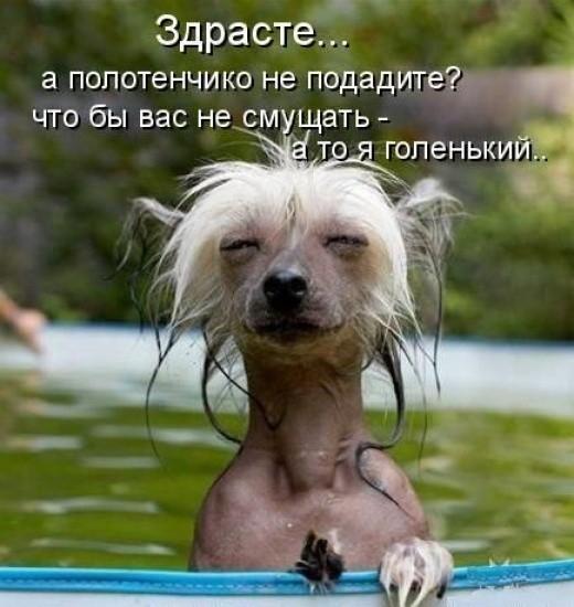 Можете оказать неловкую ситуацию?)