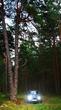 Лесной фотосет