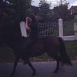 без седла на любимом коне это рай )