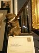 Мышонок из Шекспировского глобуса
