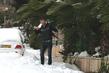 снег и пальмы, погода, ты здорова??=)