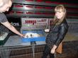 кроликов мацалии)) такие лапочки