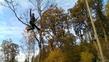 .i belieeeeve I can flyyy
