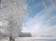 Декабрь 2012 года. В Латвии когда-то был снег.