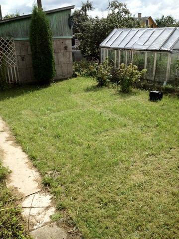 попросили подстричь газон :