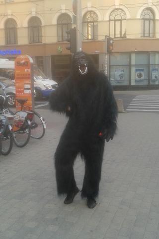 Внезапная горилла