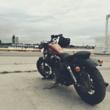 Игруля  (Harley Davidson Sportster 48)