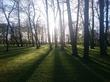 Очень Петровский парк