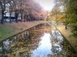 Уточкам трудно плавать в канале из-за листьев.