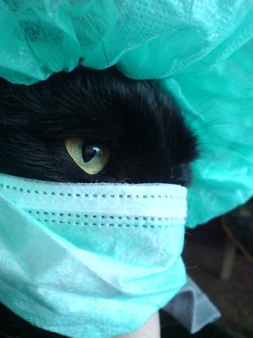 Мой любимый хирург :3