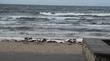 море близко подошло к берегу.