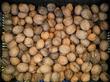 мои орехи