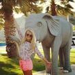мир слонам!))