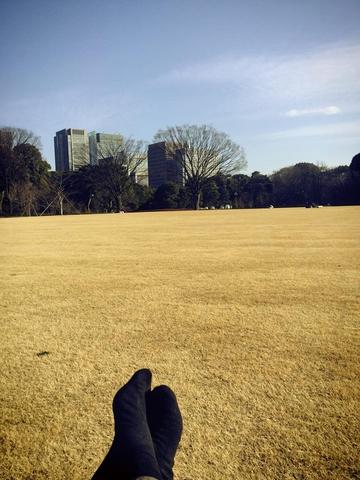 Медитирую в самом центре Токио