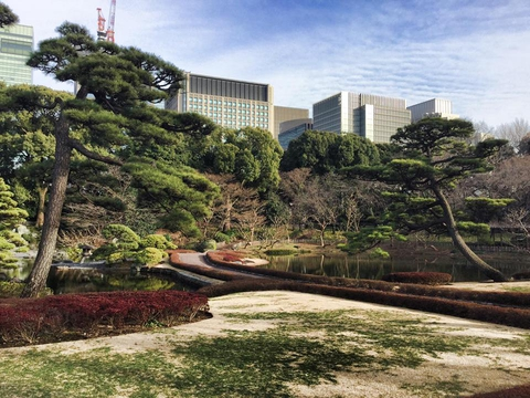Tokyo Imperial Palace Pond - красота неописуемая!!!