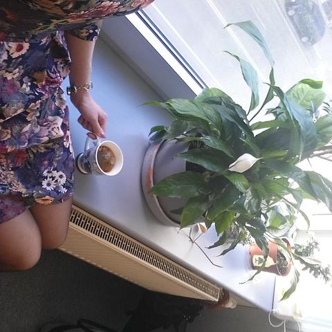 Весенняя ванилька на рабочем подоконнике
