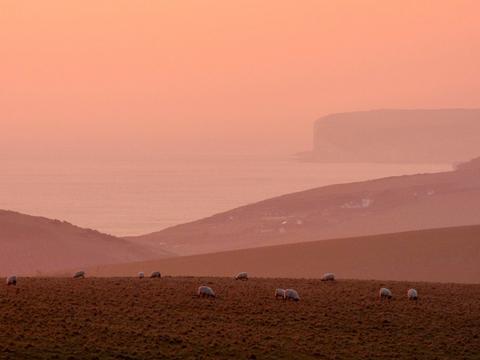 Seven sisters cliffs-на закате мартовского дня