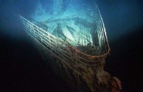 кто обитает на дне океана?