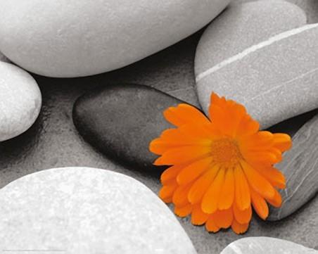 Наверное трудный вопрос...Покажите свою жизнь...В КРАСКАХ,какими она вам видится и в образах...?