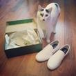 Всё что в коробке мне, коробка коту))) #cat #box