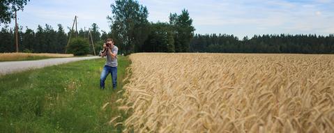 Бегаю и фотографирую по полям