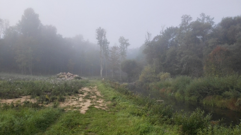 туман =)
