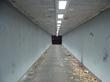 Отсюда виден белый тоннель и последнее утро.