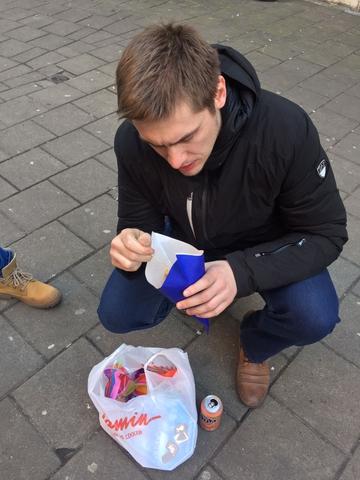 Голубь амстердамский