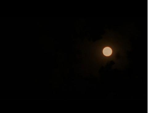 """Луна находится в созвездии: 4°3'42"""" Девы"""
