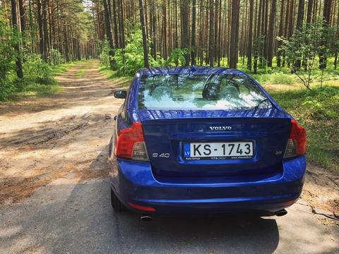 Шведы в лесу