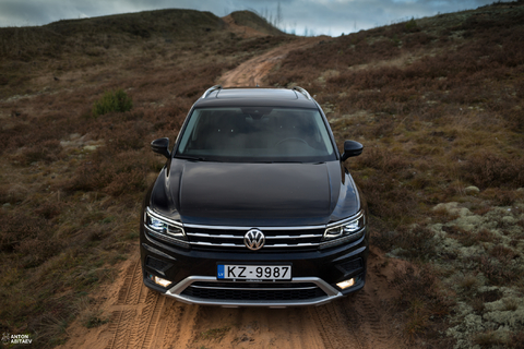 VW дилер выдал нового зверька