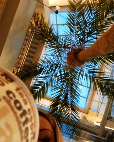Любишь сахарный песок - потрудись вырастить сахарный тростник